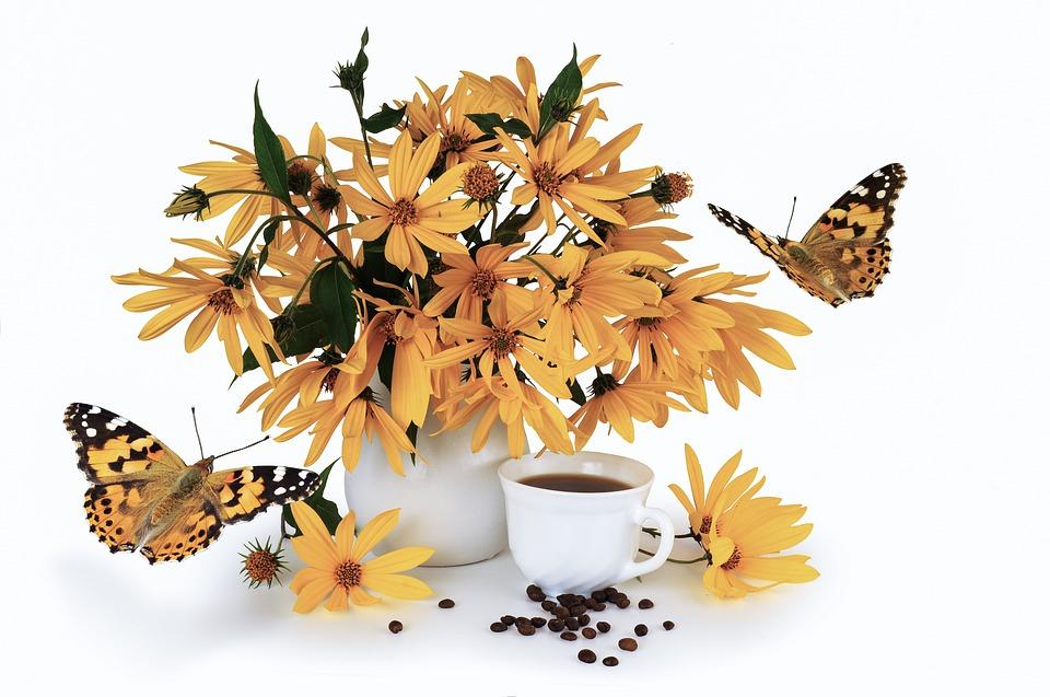 květy topinamburu